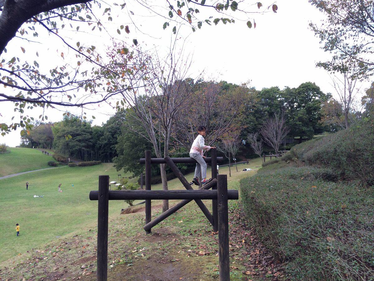 小山田緑地のアスレチック